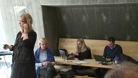 Thumbnail for entry Informasjon om arbeidet i Strategirådet og informasjon om gruppejobbingen