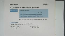 Kapittel 13 4.2-1 Trivielle og ikke trivielle løsninger - eksempler