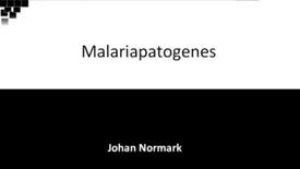 Miniatyr för inlägg T8 Infektion - Malaria 2(validerad HT18).mp4