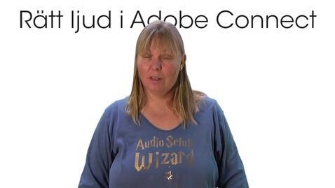 Rätt ljud i Adobe Connect