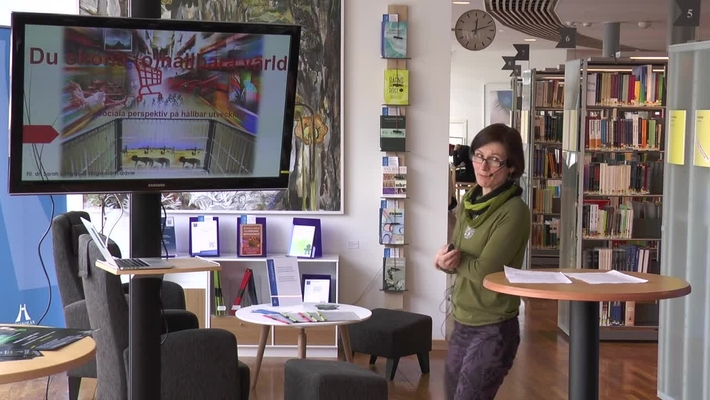 Föredragsserien 12 minuter över 12 – Sarah Ljungquist