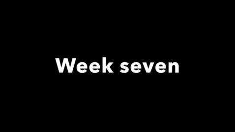 Miniatyrbild för inlägg week seven