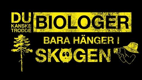 Biologiprogrammet – för dig som vill vara med och rädda världen, på riktigt