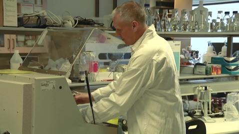 Miniatyrbild för inlägg Mikroorganismer som lever under extrema förhållanden