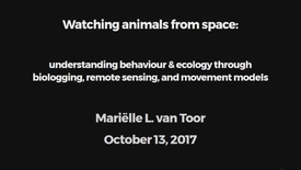 Miniatyrbild för inlägg Watching animals from space: understanding behaviour & ecology through biologging, remote sensing, and movement models