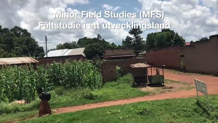 Gör en fältstudie i ett utvecklingsland